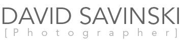 blog.DavidSavinski.com logo
